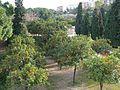 Valencia (4367982118).jpg