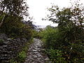 Valley of Flowers National Park 43.JPG