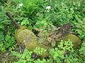 Vana-Piigaste mõisa kalmistu 01.JPG