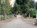 Viale Ippocastani - Rome (IT62) - 2021-08-30 - 2.jpg