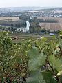 Vignes (vue sur la Marne depuis Hautvillers.51) Cl.J.Weber02 (23309704139).jpg