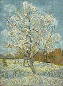 Vincent van Gogh - De roze perzikboom - Google Art Project.jpg