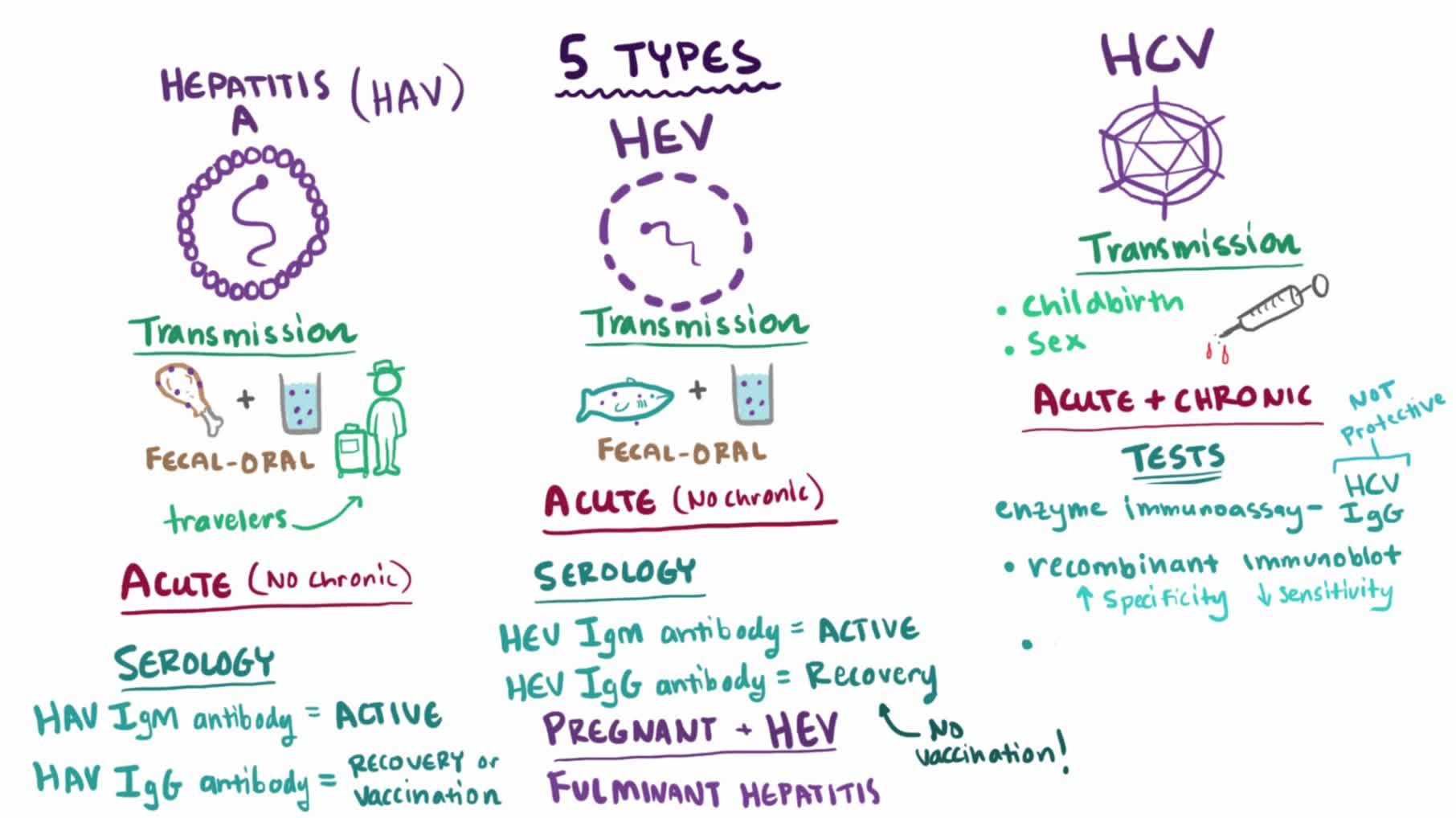 Hepatitis (Viral Hepatitis, A, B, C, D, E, G)