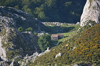 Vistas lagos de covadonga 06.jpg