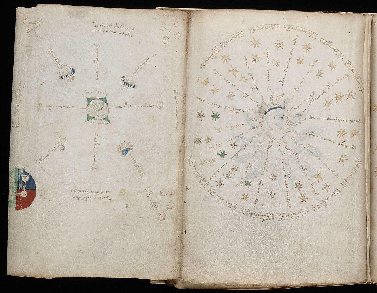 Voynich Manuscript (122).jpg