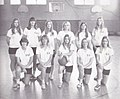 WCHS First Volleyball Team.jpg