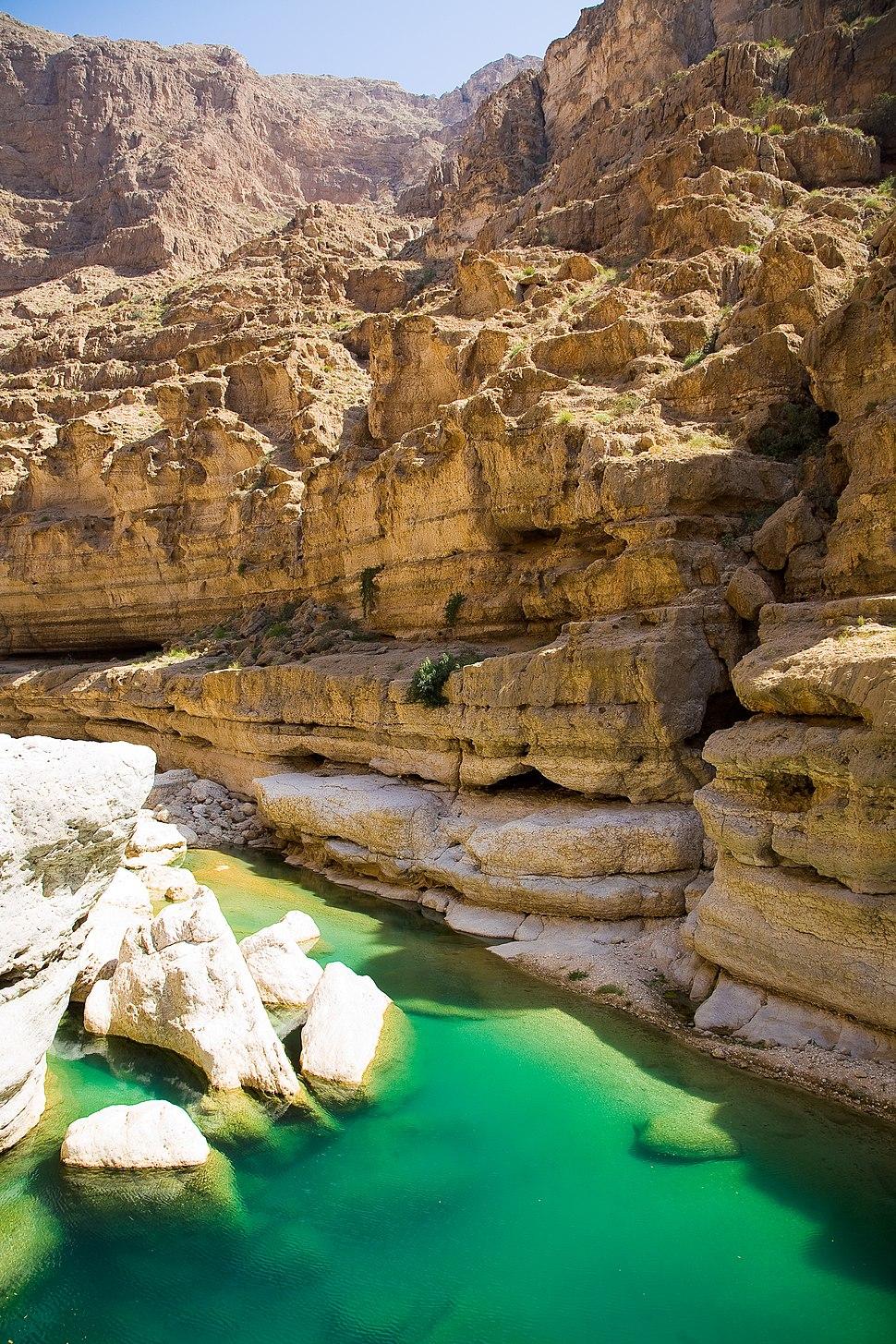 Wadi Shab (6)