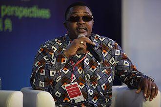 Ministry of Foreign Affairs (Zimbabwe) - Image: Walter Mzembi, Minister of Tourism, Zimbabwe (14002485662)