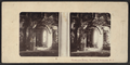Washington Irving, Sunnyside, Irvington, N.Y, from Robert N. Dennis collection of stereoscopic views.png