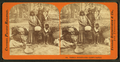 Washoe Indians, the chief's family, by Thomas Houseworth & Co..png