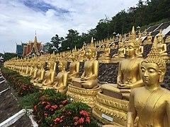 Wat Tamatam, Pakse.jpg