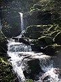 Waterfall, Glen Lyn Gorge - geograph.org.uk - 1256327.jpg