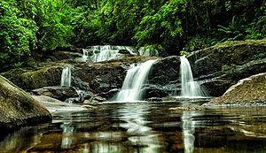 Sinharaja Forest Reserve - Image: Waterfall Sinharaja