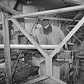 Werknemer van de citrussapfabriek Assis aan de weg van Tel Aviv naar Haifa aan h, Bestanddeelnr 255-1254.jpg