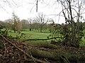 West Chiltington Golf Course - geograph.org.uk - 1184032.jpg