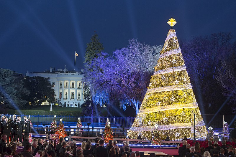 File:White House Christmas (37950540385).jpg