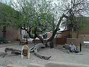 Wickenburg-Jail Tree-1863.jpg