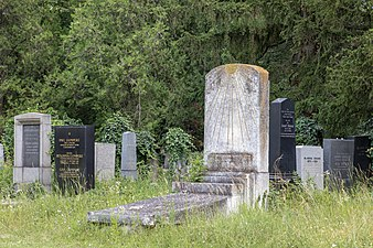 Wien, Zentralfriedhof, Alter Jüdischer Friedhof -- 2018 -- 3221.jpg