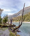 Wilkin River, Otago, New Zealand 06.jpg