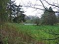 Woodland Pond - geograph.org.uk - 409557.jpg