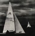 World Champion Soling 1985.png