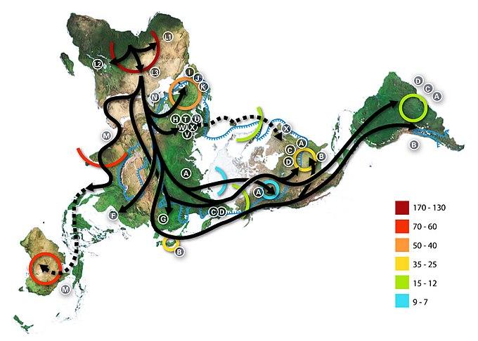 Haplogroup - Wikiwand