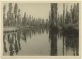 Xochimilco, en sjö nära México som nästan uteslutande består av kanaler - SMVK - 0307.b.0040.b.tif