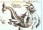 Zahn, Johann - Mythical Satyrus marinus - 1696.jpg