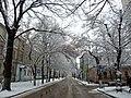 Zhukovsky street in winter 01.JPG