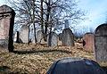 ZidovskyHrbitovMorina8569.JPG