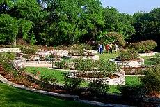 Zilker Botanical Gardens. 7. Mabel Davis Rose Garden