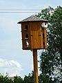 Zoo Tábor-Větrovy, holub 01.jpg