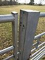 """Waymarking"" on Stone Hill Lane - geograph.org.uk - 1713770.jpg"