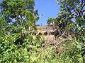 Île aux Nattes - 2006 - 16.JPG