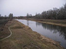 Žitava (rieka)
