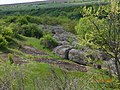 Балка 2016 - panoramio (5).jpg