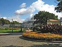 Jardin botanique de saint p tersbourg wikimonde for Alexandre jardin bibliographie