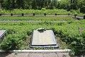 Братська могила радянських воїнів 14.jpg
