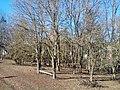 Більче-Золотецький ландшафтний парк,Більче-Золоте.jpg