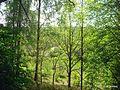 Вид от кладбища на реку - panoramio.jpg