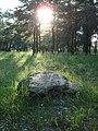 """Власовка, неизвестный художник """"Экономия бетона"""" - panoramio (1).jpg"""