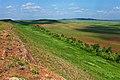 Выходы красноцветных конгломератов на восточных склонах горы Юкалытау - panoramio.jpg