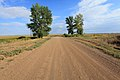 Дорога на посёлок Сазан - panoramio.jpg