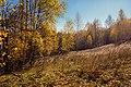 Золотая осень(Ильинская балка).jpg