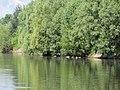 Куликівське озеро 03.jpg