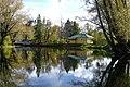 Осенний пруд и отражения.jpg