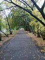 Осень в парке - panoramio (6).jpg