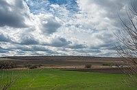 Панорама Селіванівського.jpg