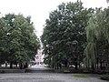 Помнік Янку Купалу, Minsk, Belarus - panoramio.jpg