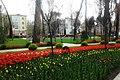 Скверы Душанбе 7.jpg